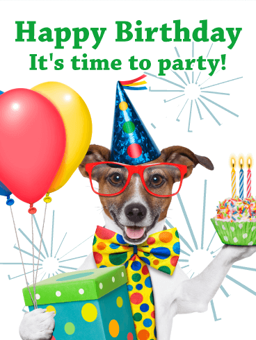party dog  animal birthday card  birthday  greeting cards by davia, Birthday card