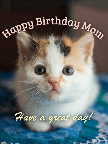 kitten happy birthday card mom birthday greeting cards davia