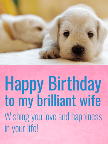 Amazing Charming Puppy Happy Birthday Card For Wife Birthday Funny Birthday Cards Online Chimdamsfinfo