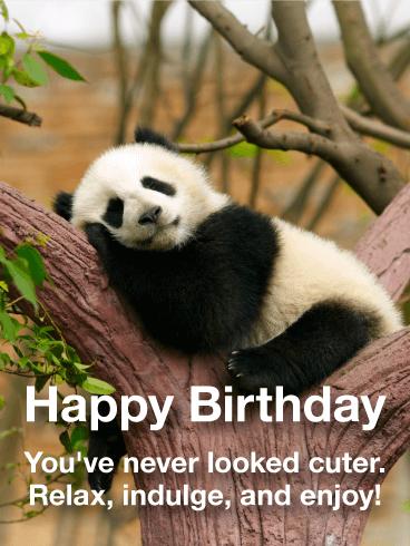 adorable panda happy birthday card birthday greeting