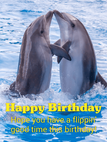 Image result for happy birthday dolphin pic