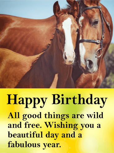 Wondrous Beautiful Horses Happy Birthday Card Birthday Amp Greeting Personalised Birthday Cards Epsylily Jamesorg