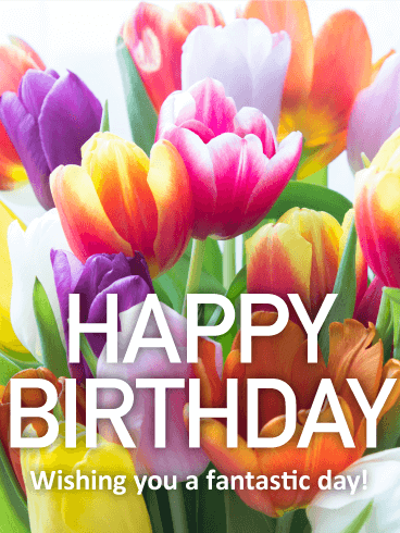 purple princess tulip pretty tulip happy birthday card birthday greeting cards by davia