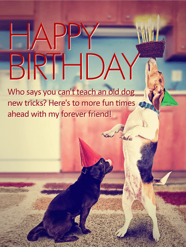 birthday wishes for best friend tumblr