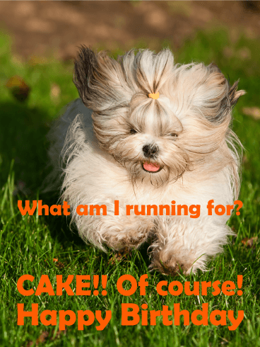 Run For Cake Funny Birthday Card Birthday Amp Greeting