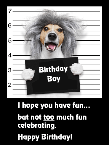 Have Not Too Much Fun! Funny Birthday Card | Birthday ...