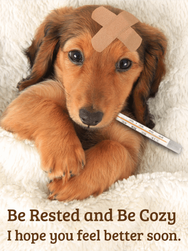 be rested and be cozy get well card birthday