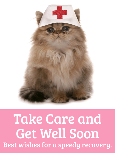 Nurse Cat Get Well Card | Birthday & Greeting Cards by Davia
