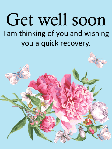 carnation get well card birthday amp greeting cards by davia