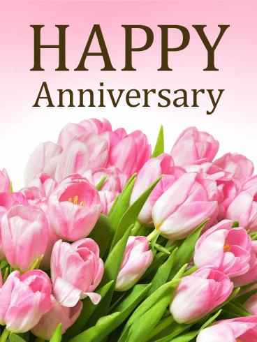 Pink Rose Happy Anniversary Card | Birthday & Greeting ...
