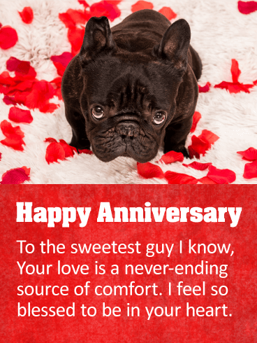 To the Sweetest Guy - Happy Anniversary Card | Birthday ...