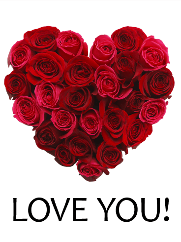 Red Rose Love Card | Birthday & Greeting Cards by Davia