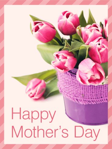 Tulip Happy Mother's Day Card | Birthday & Greeting Cards ...