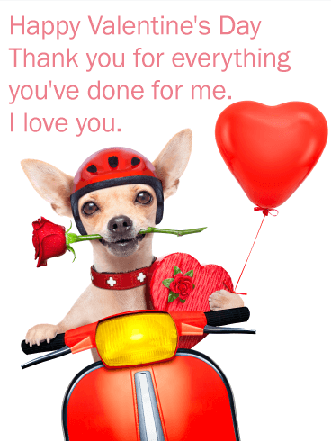 Romantic Chihuahua Happy Valentine S Day Card Birthday