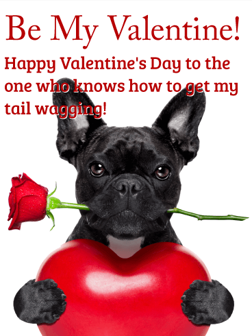 Make My Tail Get Wagging Happy Valentine 39 S Day Card